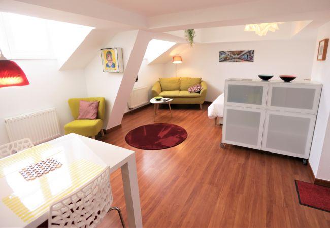Appartement à Strasbourg - 13 rue de la mésange 1pc